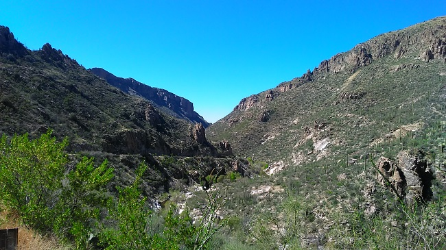 Sabino Canyon Arizona